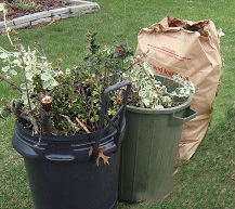 20151210 Bagged Yard Waste.jpg