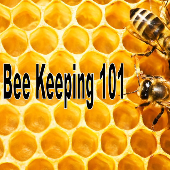 20190921 Bee Keeping 101